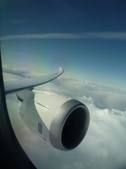 787主翼.JPG